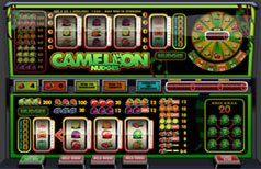 Speel Cameleon